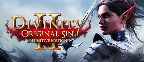 Divinity: Original Sin 2 (MAC) Free Download