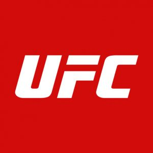 UFC++ Free Download